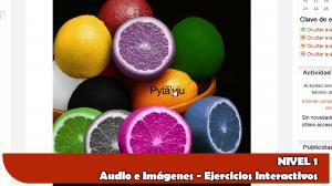 curso_guarani_online_liternauta_org4