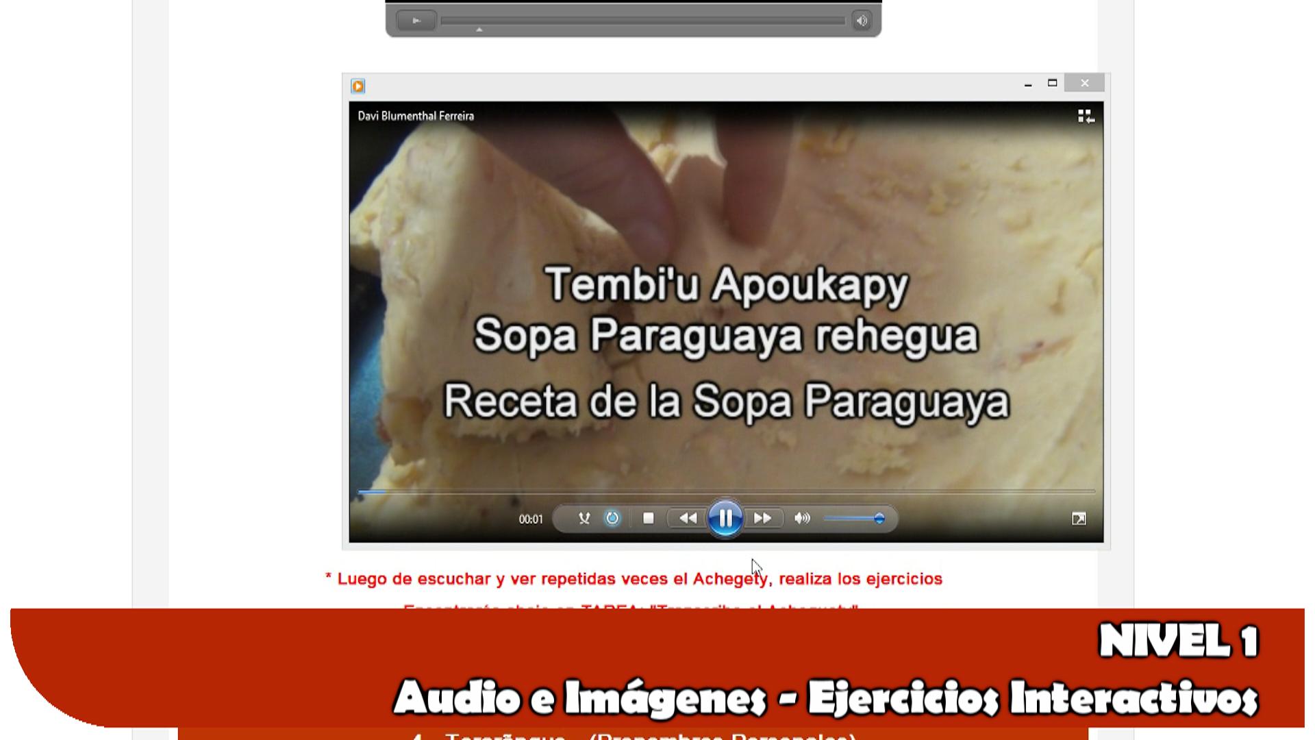 curso_guarani_online_liternauta_org5