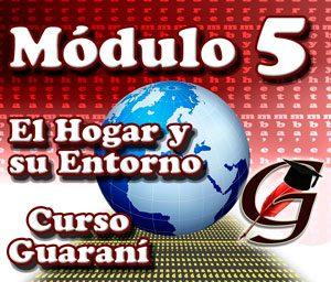 modulo-5-temas-guarani