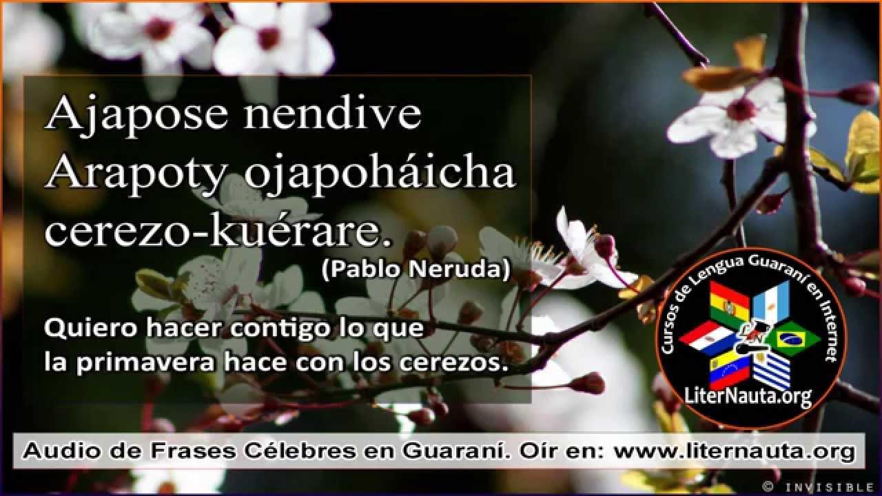 Vocabulario Pagina 6 Cursos De Idioma Guarani Online