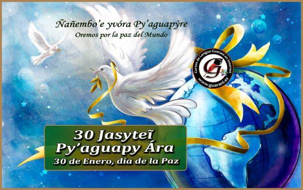 imagenes curso guarani es 146