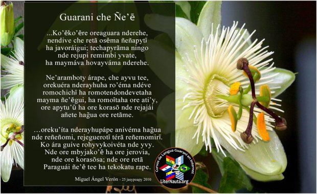 imagenes curso guarani es 200
