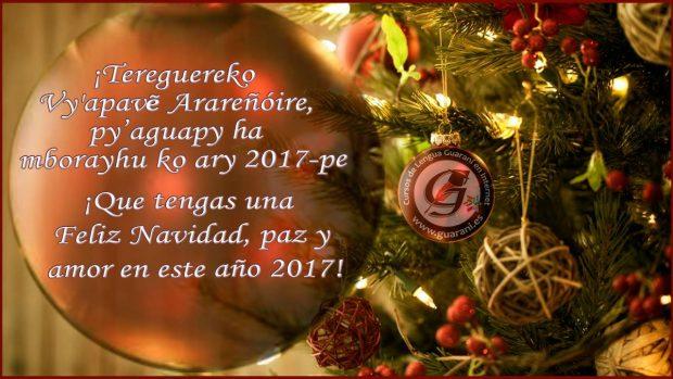 imagenes curso guarani es 224
