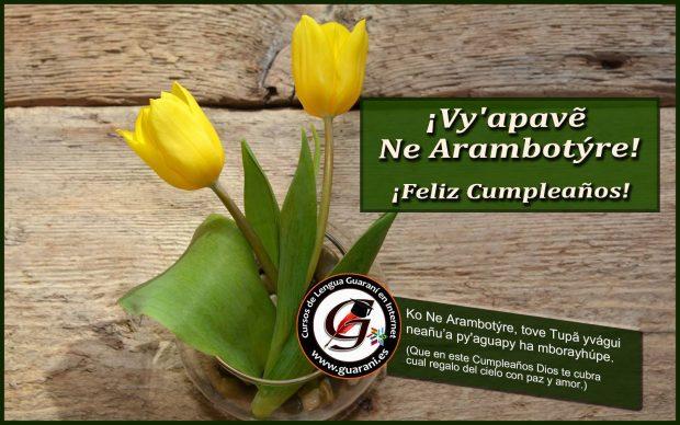 imagenes curso guarani es 303