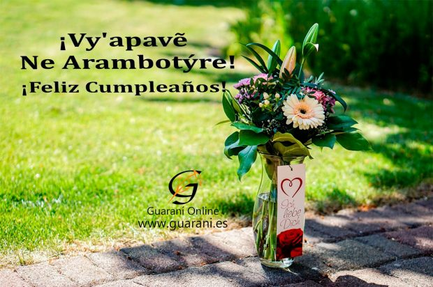 imagenes curso guarani es 397